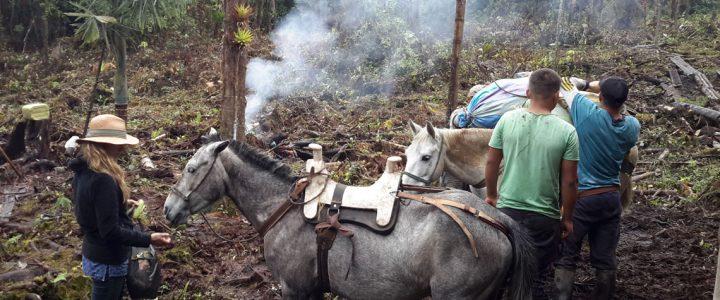 Schamanische Reise nach Kolumbien